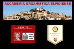 3.8.50 - Accademia Organistica Elpidiense - copertina