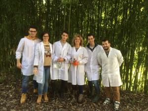 TC2 - i chimici al lavoro pennellato di autunno